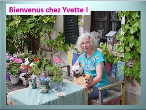 Aides du Luxembourg en faveur des chiens CCTNA de Djerba Yvette12