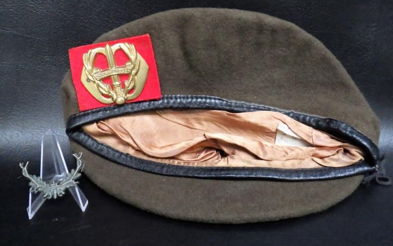 Berets et insignes Hollandais Rimg0810