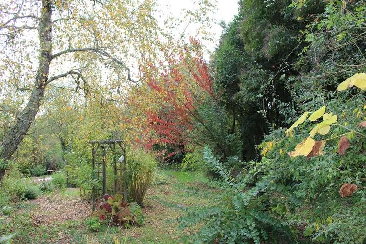 Couleurs d'automne !!! 22102014