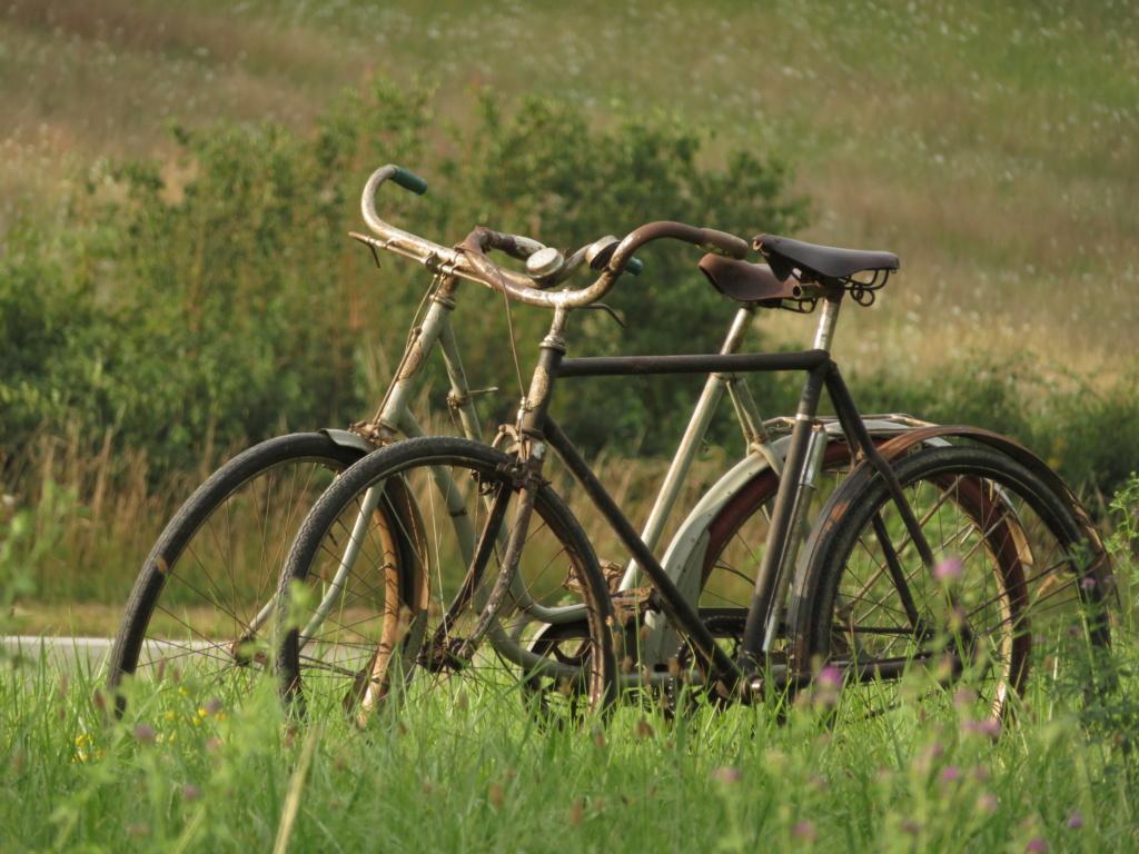 Bicyclette (Blitz ref 35-4043 1/35) Img_3711