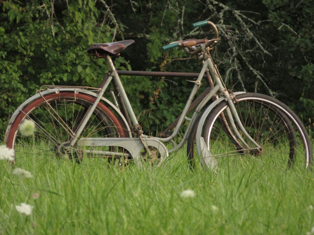 Bicyclette (Blitz ref 35-4043 1/35) Img_3712