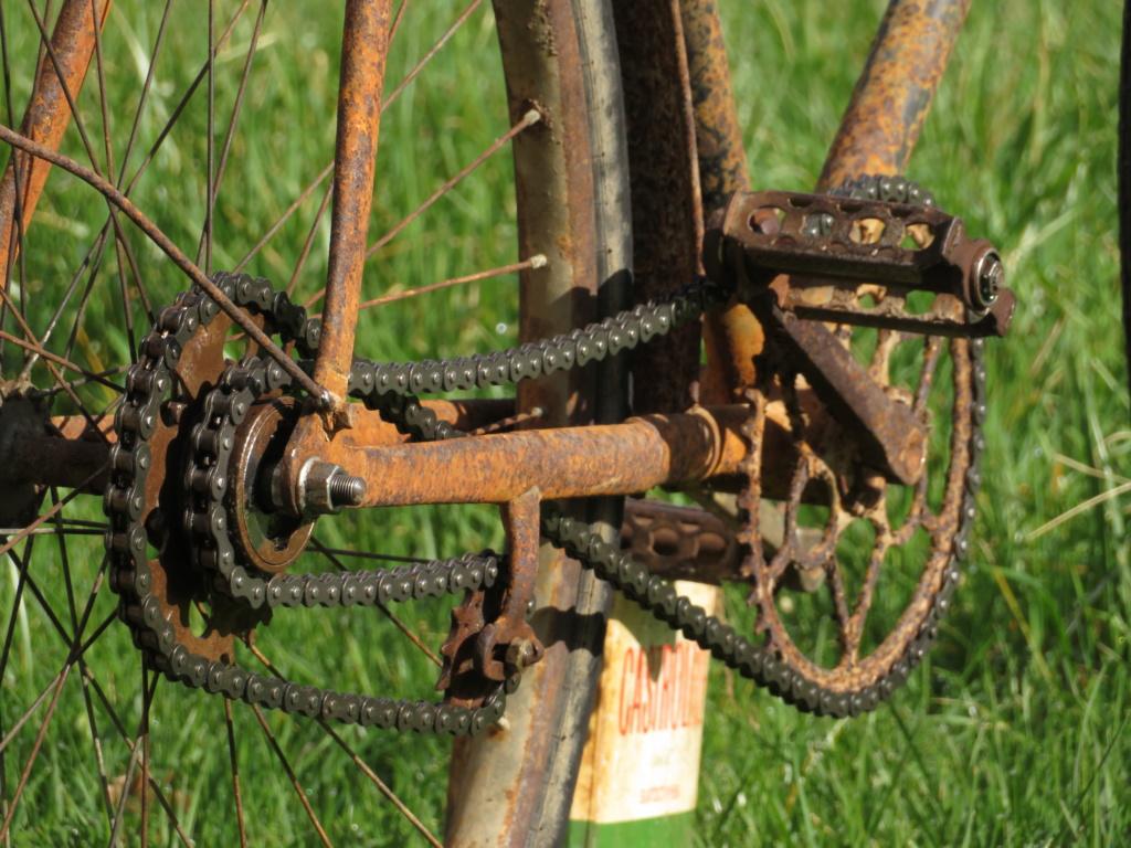Bicyclette (Blitz ref 35-4043 1/35) Img_5712