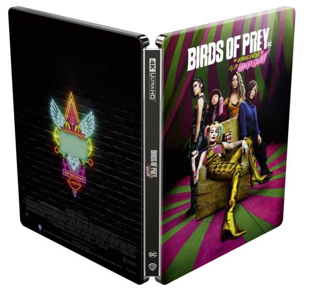 Birds of Prey Birds-10