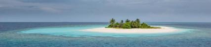 L'île aux poissons