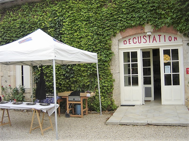 Picnic vignes à l'Echelette Dimanche 23 septembre - De 11H à 16H Dsc08314