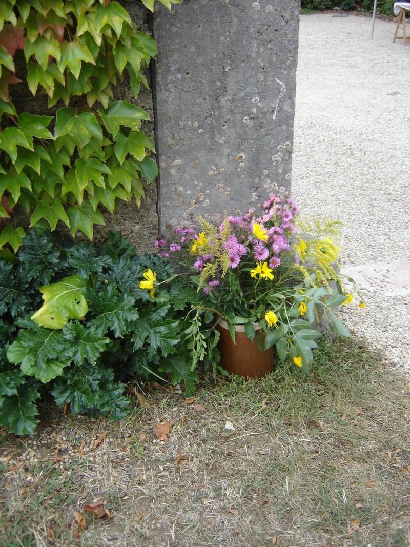 Picnic vignes à l'Echelette Dimanche 23 septembre - De 11H à 16H Dsc08320
