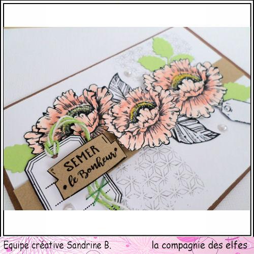 carte theme bonheur 3/3 à programmer Bonheu11