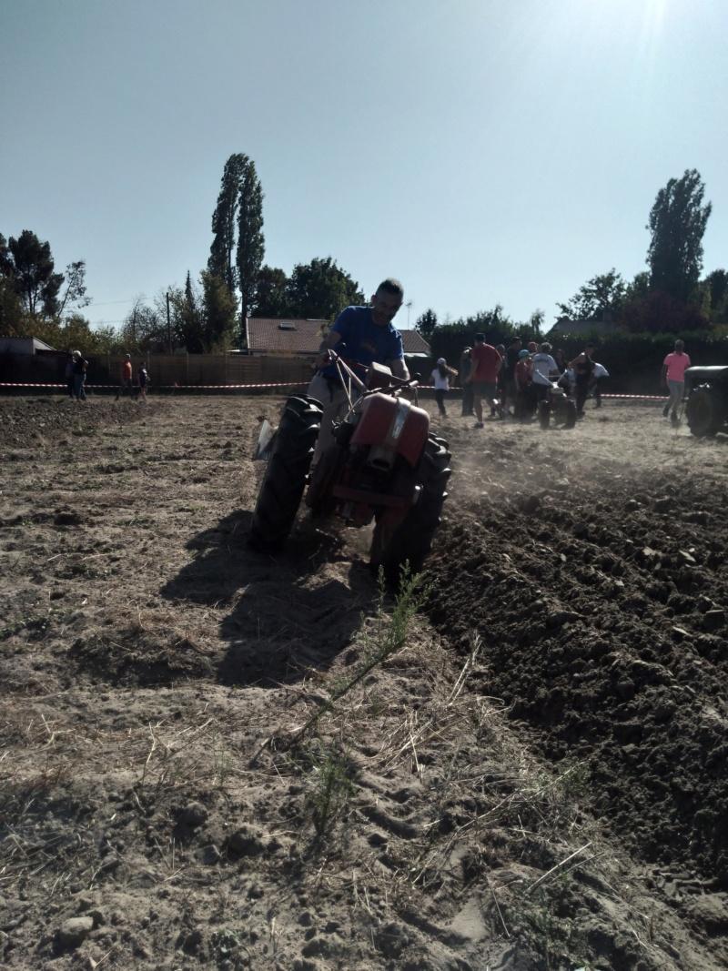 motoculteur - VIARMES 2019 CONCOURS DE LABOUR AUX MOTOCULTEURS - Page 2 Img_2123