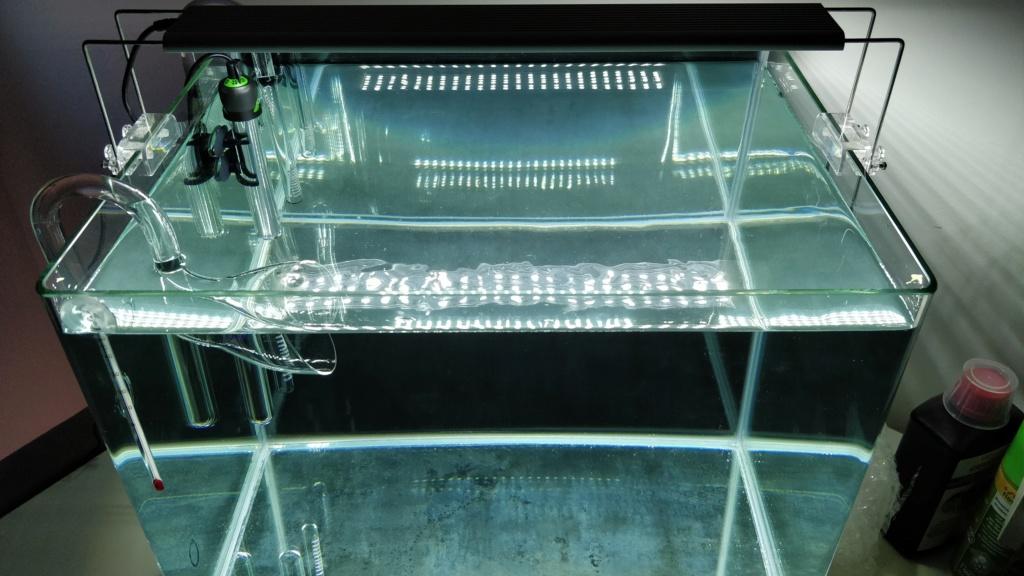 Scaper's tank 55L Drystart (->en eau 31/05) Img_2010