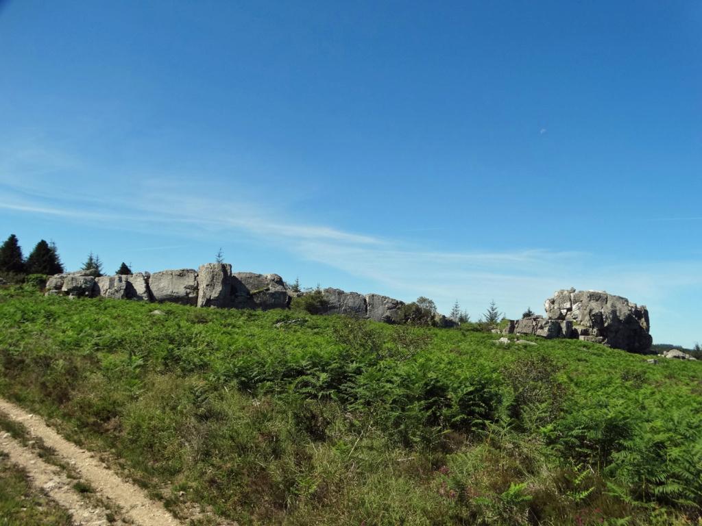 Balade dans les Monts d'Arrée - Circuit des landes et tourbières 17_bot10