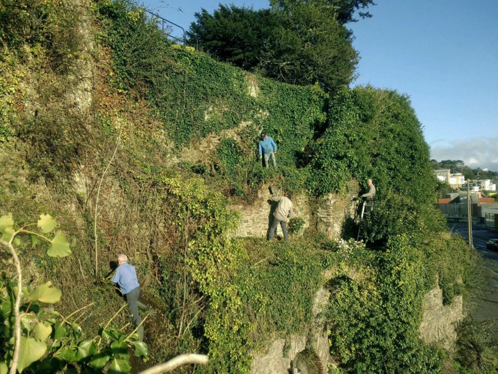 Jardin extraordinaire sur les falaises de Brest 3_783410
