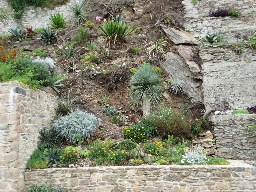 Jardin extraordinaire sur les falaises de Brest 6_yucc10