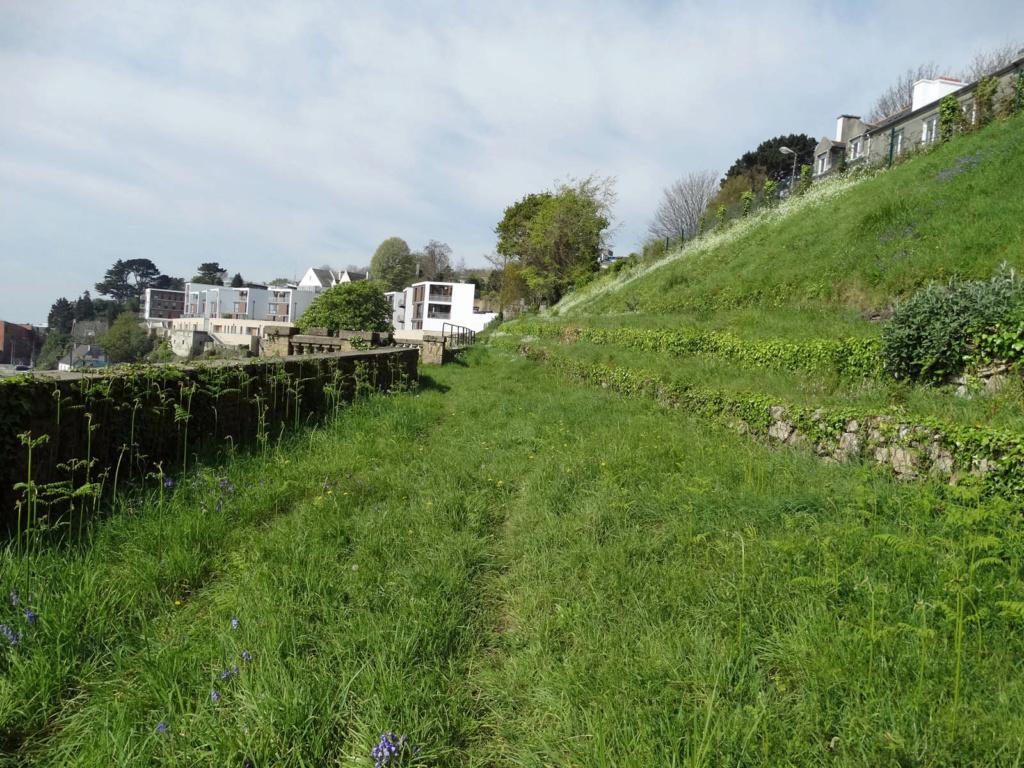 Jardin extraordinaire sur les falaises de Brest 7_poul10