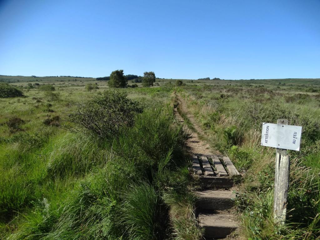 Balade dans les Monts d'Arrée - Circuit des landes et tourbières 8_botm10