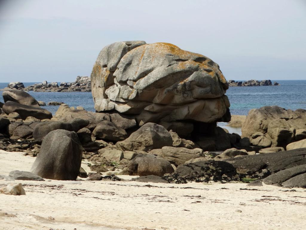 Balade sur la côte des Légendes entre Kerlouan et Brignogan-Plages Dsc00327