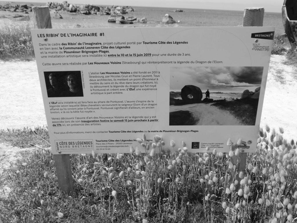 Balade sur la côte des Légendes entre Kerlouan et Brignogan-Plages Dsc00331