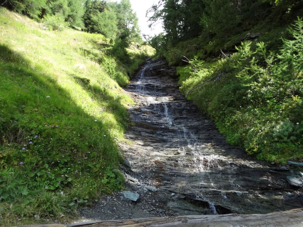 Randonnée dans le Val d'Ayas (Val d'Aoste- Italie) Dsc04416