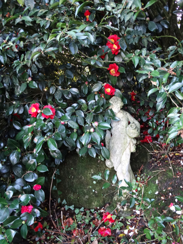 Jardins d'hiver San_di10