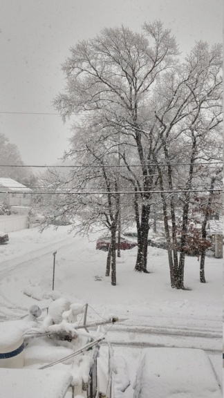 Super Bowl Snowstorm, Part II: First Call - Page 12 Img_2018