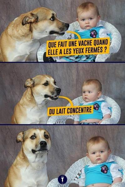 Les blagues les plus stupides - Page 5 Sp_bul10