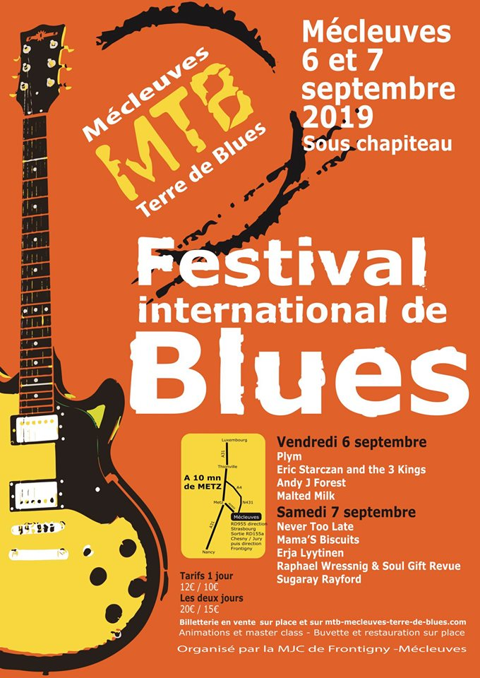 FESTIVAL INTERNATIONAL MECLEUVES Terre de Blues Affich10