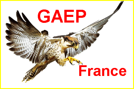 Forum de rechargement-armes-lisses Gaep2210