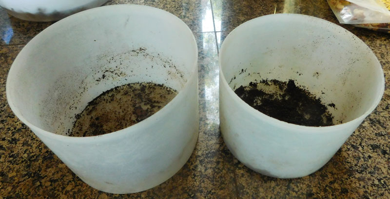 Show us your kitchen compost container - Page 7 Compos10