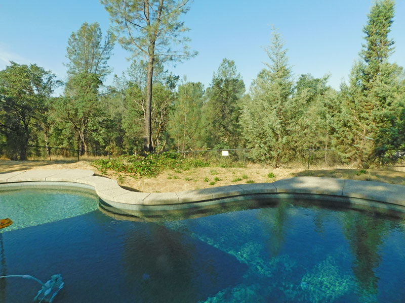 Northern California & Coastal Valleys - What are you doing this month? - Page 16 Pool10