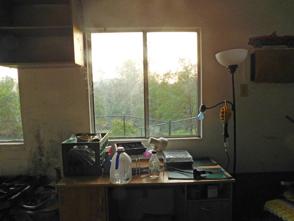LED grow lights......any advice? - Page 3 Room311