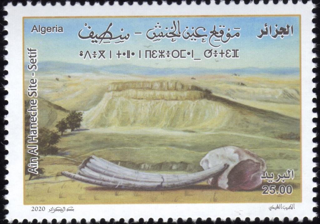01/2020 : Sites Archéologiques Img31311