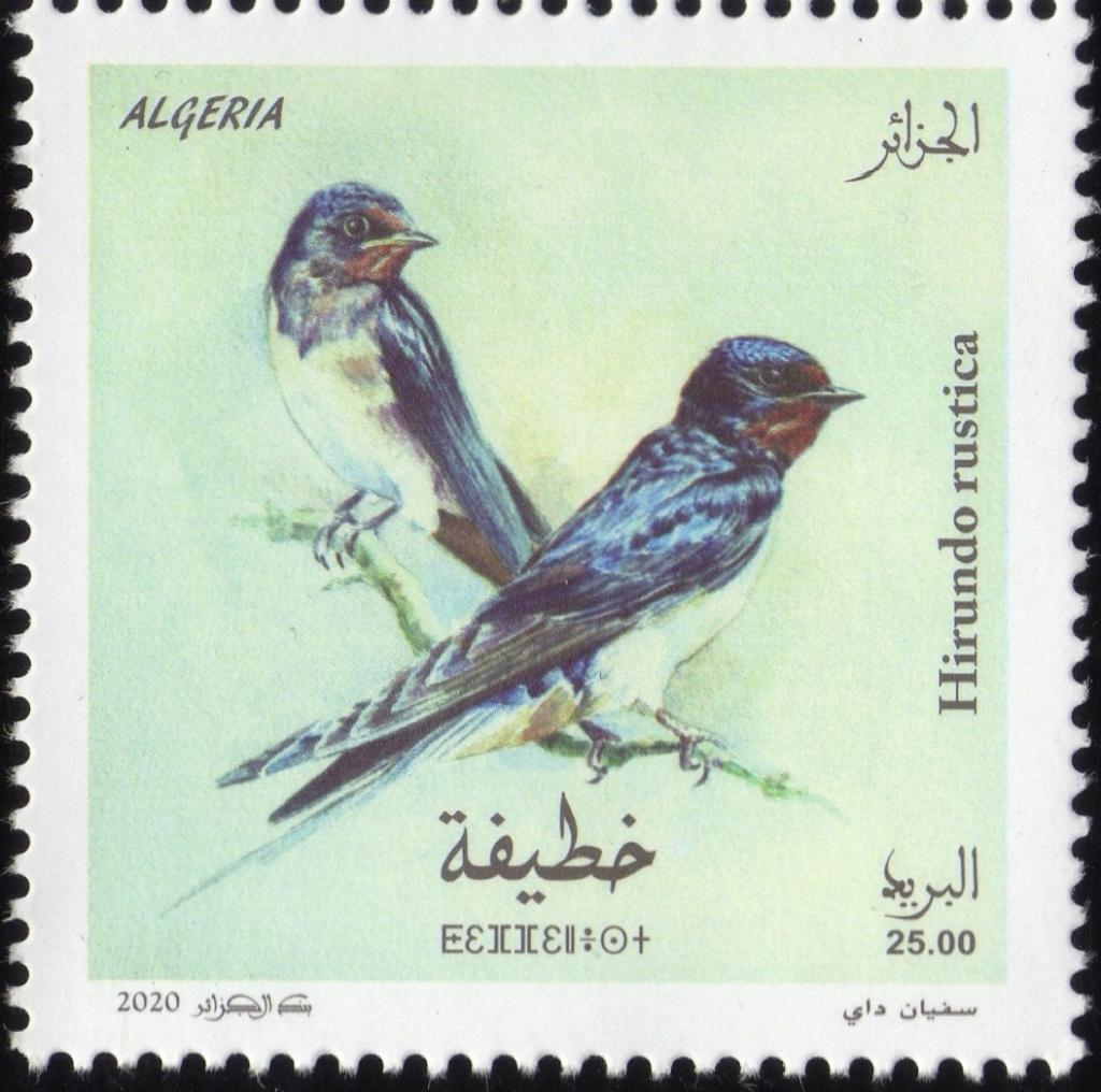 Emission N° 02/2020 Oiseaux  Img35610