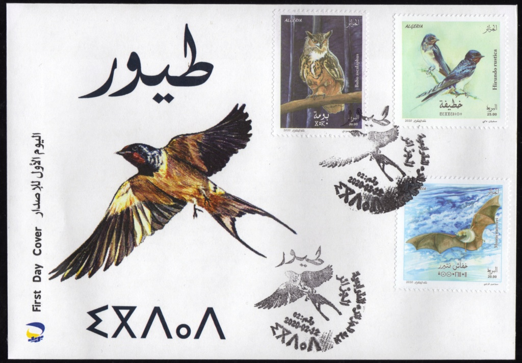 Emission N° 02/2020 Oiseaux  Img35710