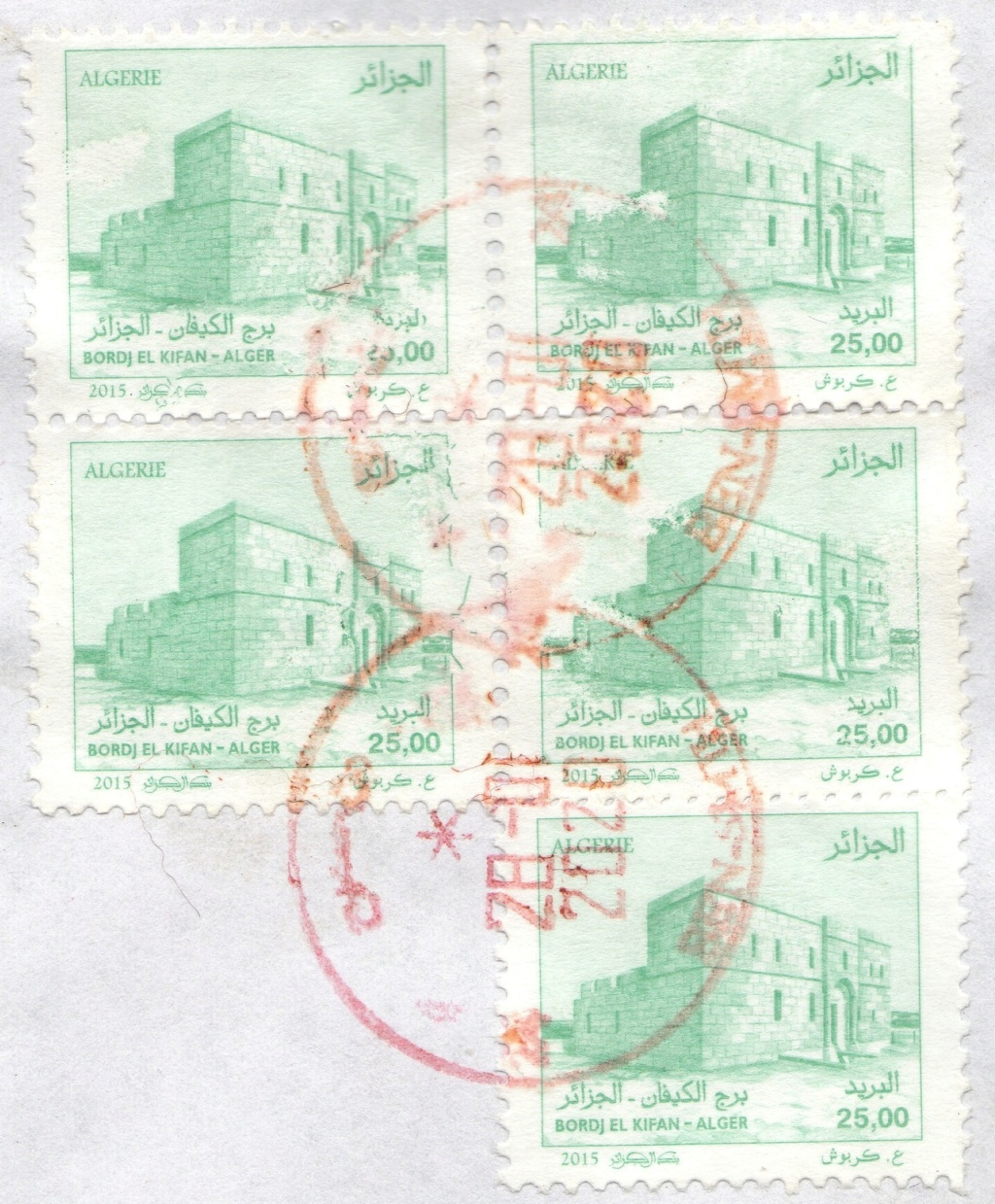 Variétés : BORDJ EL-KIFFAN - Page 2 Img37010