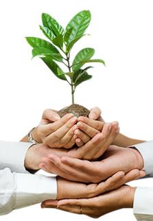 Education à l'écologie intégrale - Page 2 Coo10