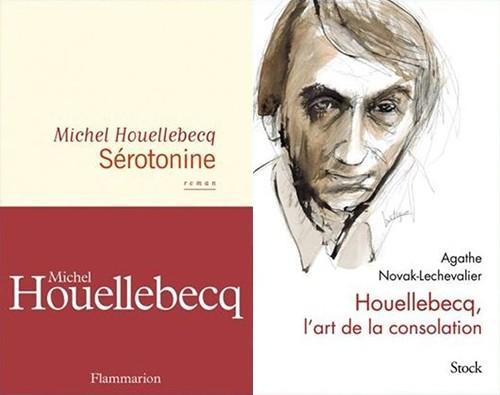 Sérotonine : l'amour ou l'enfer de Michel Houellebecq Hh10
