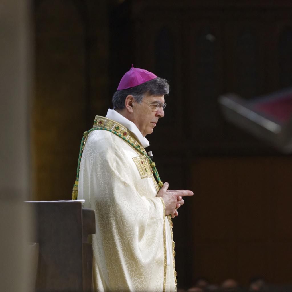 ✟Toute l'Actualité de notre Saint-Père le Pape François✟ - Page 13 I7a56010
