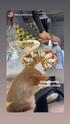 Фотографии на официальных сайтах группы Серебро - Страница 12 05086410