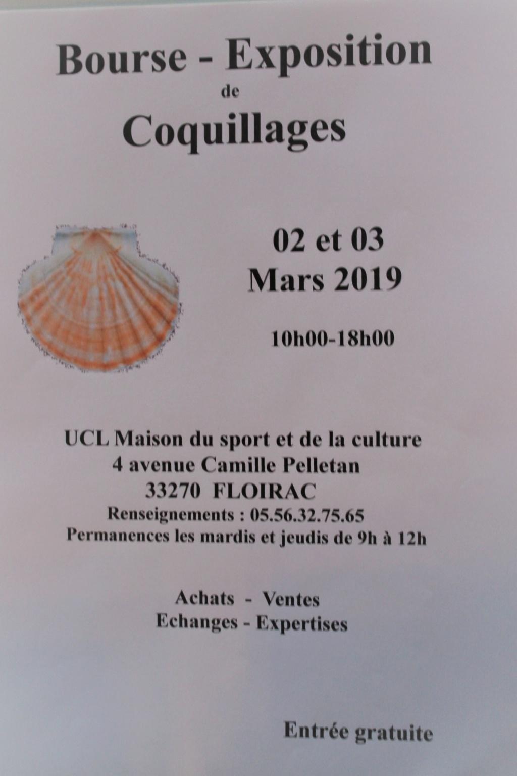 Bourse de Floirac  02 et 03 mars 2019 Img_8010