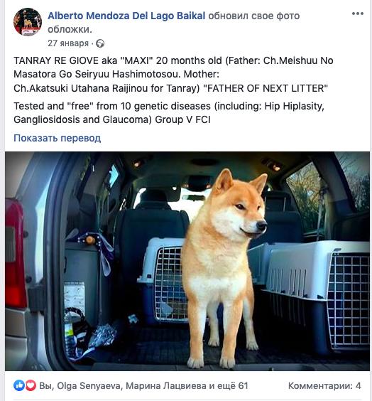 Ганглиозидоз - Страница 4 E_ua_232