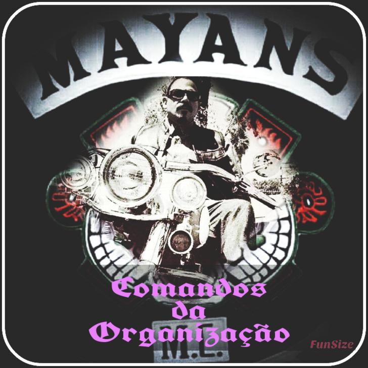 Manual Mayans 2019  - Página 2 610
