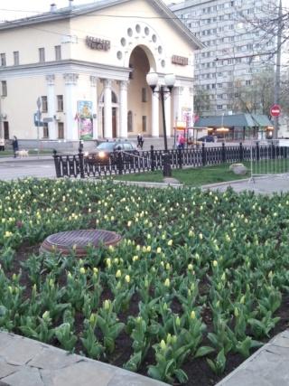 Из истории московских улиц - Страница 3 Img_2023