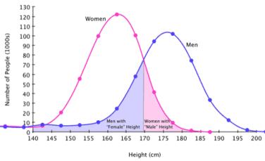 170 es una altura muy normal para ser mujer hoy en dia  - Página 18 Height10