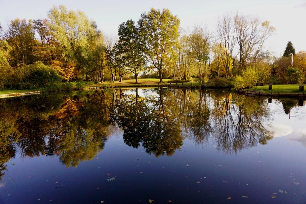 Reflets Parc_d10