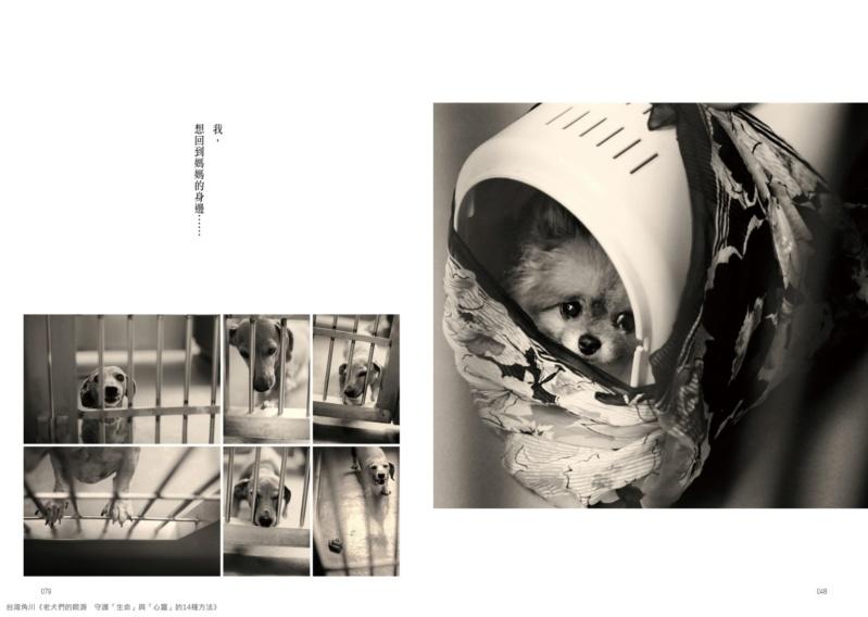 「我,想回到媽媽的身邊」 兒玉小枝著作《老犬們的眼淚》 公開日本棄養寵物收容所殘酷現況 03_aao10