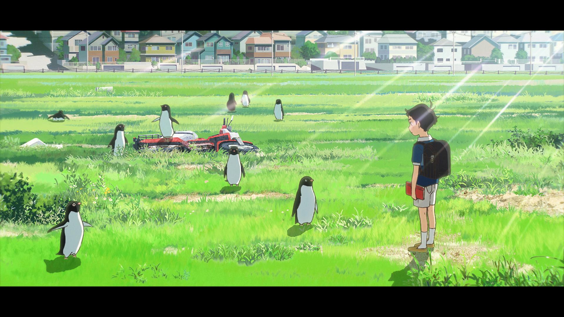 電影《企鵝公路》畫面和場景 0614_p12