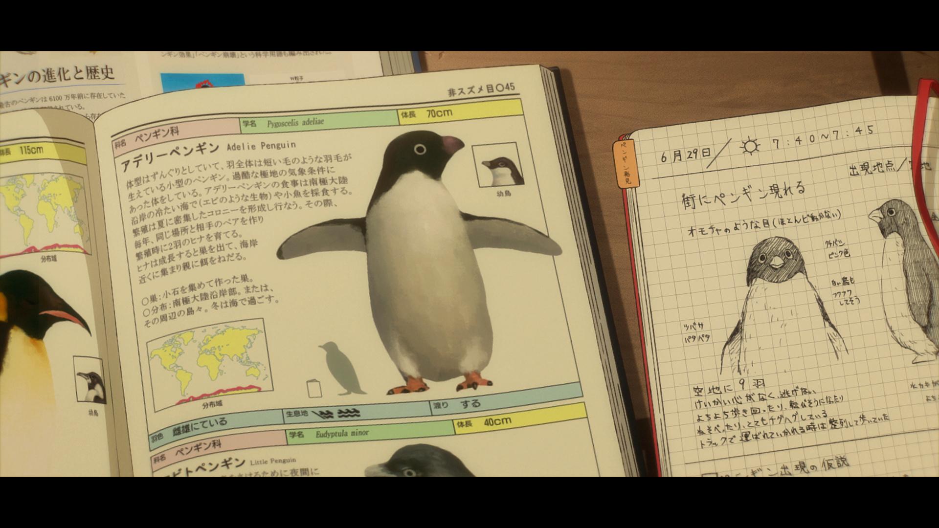 電影《企鵝公路》畫面和場景 0614_p19