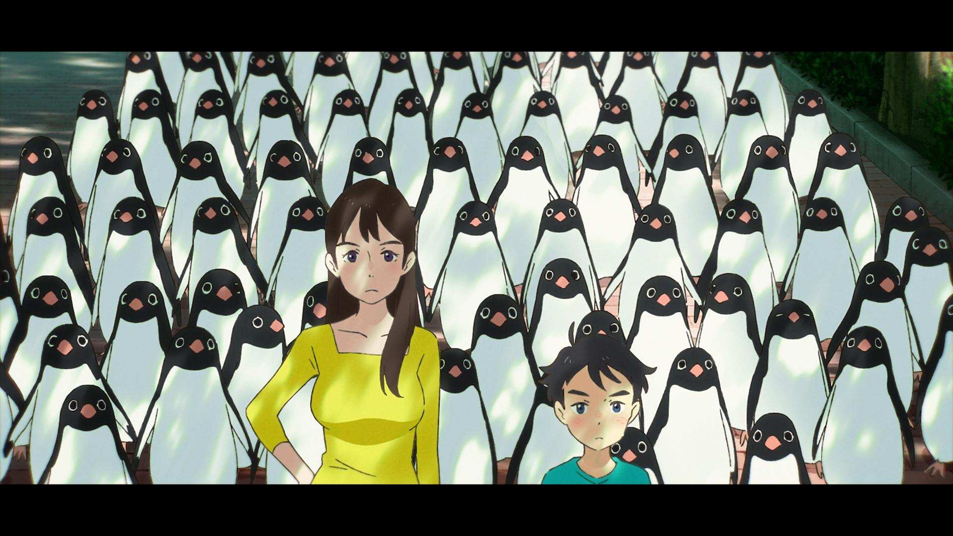 電影《企鵝公路》畫面和場景 0614_p22