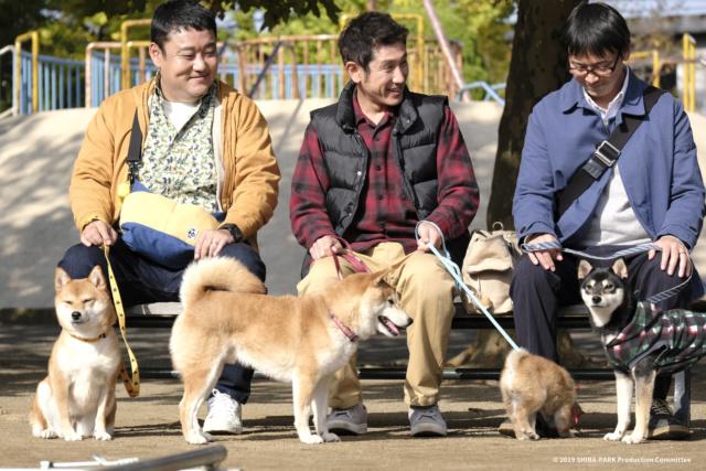 柴公園 Shiba-Park 10.25 無汪不利 _dsf6210