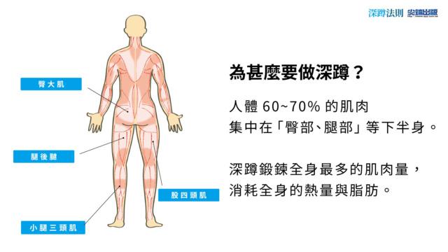 日本正流行坂詰式深蹲減重法 利用「超恢復」的神奇力量!教你三日一次、一次三分鐘,一招瘦全身 Aaia10