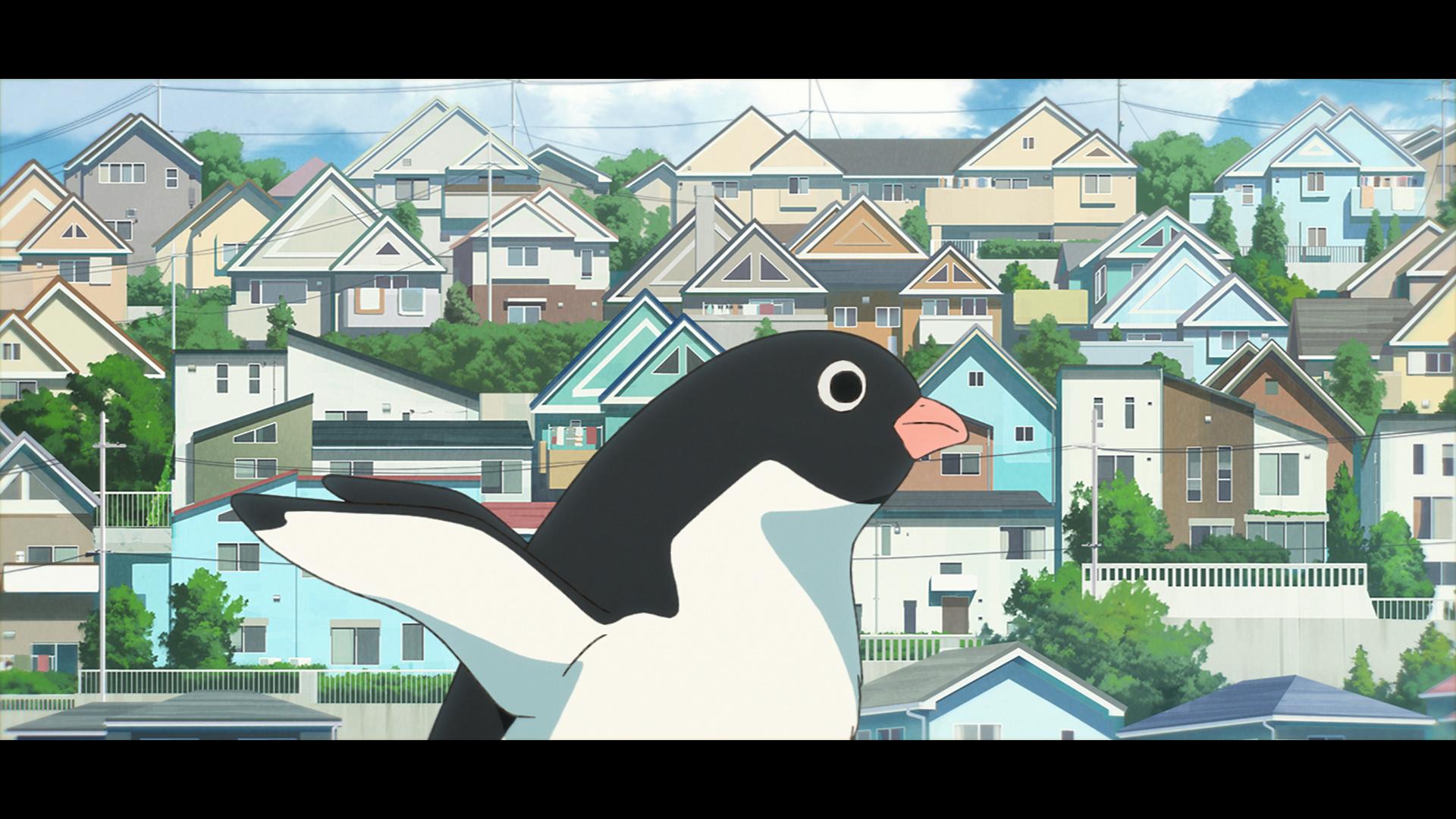 電影《企鵝公路》畫面和場景 Ph_s_012